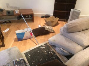Living Room Clearance